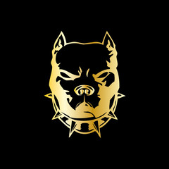 Pitbull Gold
