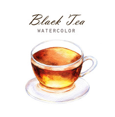 Hand-drawn watercolor illustration of the tea. Cup of the black tea isolated on the white background.