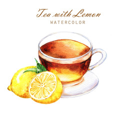 Hand-drawn watercolor illustration of the tea. Cup of the lemon tea, lemon sliced fruits and leaves isolated on the white background.