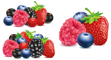 group of strawberry, blueberry, raspberry, blackberry