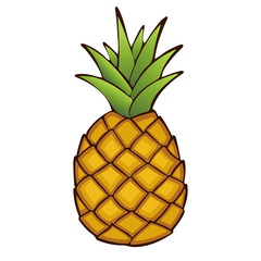 Pineapple. Painted fruit, graphic art, cartoon. Vector illustration