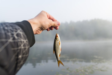 fish on a hook against the background of the river