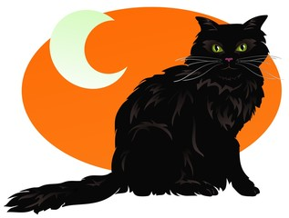 Fluffy black cat with a spooky moon