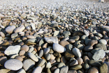 perspective view of beautiful dry round colored sea pebbles on p