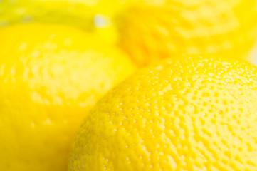 Fototapete - Zitronen im Netz