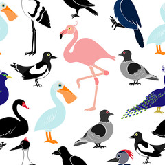 Seamless pattern with different birds on white background.