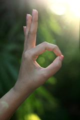Hand OK sign against green background