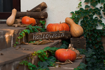 Pumpkins in front door to celebrate. Halloween. Selective focus.