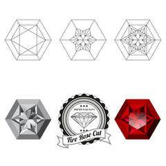 Set of fire rose cut jewel views isolated on white background - top view, bottom view, realistic ruby, realistic diamond and badge. Can be used as part of logo, icon, web decor or other design.