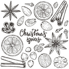 Collection of Christmas spices and citrus