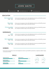 Luxury personal vector resume - cv template