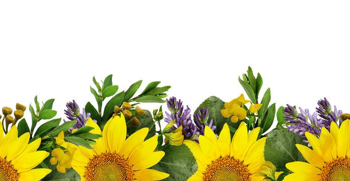 Sunflowers and wild flowers seamless border