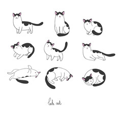 Set of different doodle poses cat. Pets.
