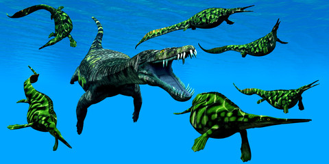 Nothosaurus Marine Reptile - A Nothosaurus marine reptile attacks a pod of Hepehsuchus dinosaurs in a Triassic Ocean.