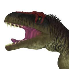 Tyrannotitan Dinosaur Head - Tyrannotitan was a carnivorous theropod dinosaur that lived in the Cretaceous Period of Argentina.