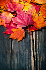 Autumn maple leaves on vintage dark wooden background with copys