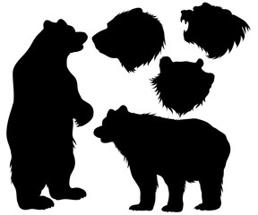 bear, grizzly, silhouette set