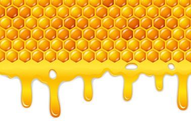 Cartoon honeycomb with honey dripping