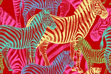 Seamless pattern with African animals zebra.