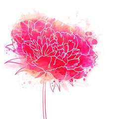 Beautiful Peonies flower. Watercolor painting.