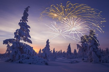 Happy New Year card with firework, forest and northern light.