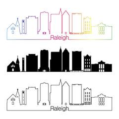 Raleigh V2 skyline linear style with rainbow
