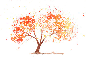 Autumn tree on white, watercolor painting