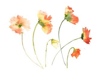 Wild flowers, watercolor painting