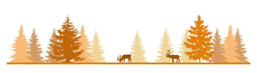 Deers In The Forest In The Fall