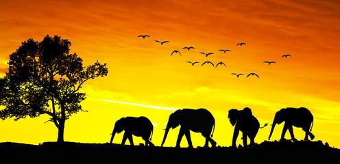 animales en el paisaje