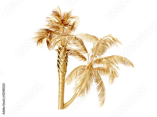Coconut palm trees  3D rendering