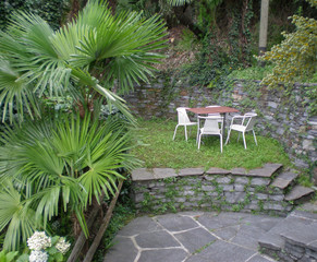 A table with 4 chairs in a garden, with some little palms