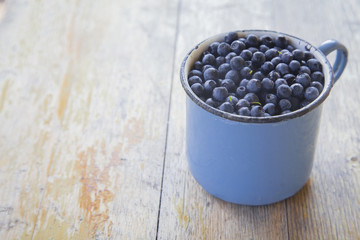 Freshly picked bilberry in a metal blue mug on shabby wooden desk. Selective focus. Free space for text. Soft morning light.