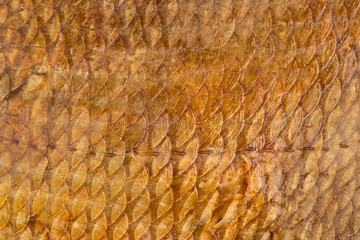 Scales of smoked fish
