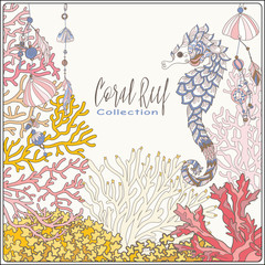 Coral reef collection. Corals and fish.