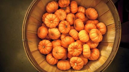 Orange pumpkins autumn background.