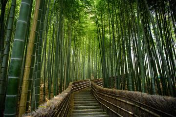 Poster de jardin Bambou 京都嵐山 念仏寺の竹林