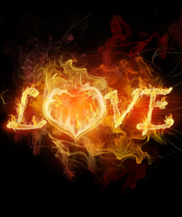 Aluminium Prints Flame love