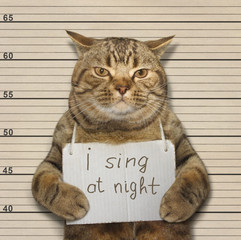 A cat often sings at night. It's songs keep people awake. It was arrested for this.