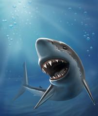 dangerous shark