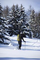 homme qui marche dans la forêt dans la neige avec un sac à dos