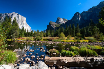 A river filled with stones in the beautiful green Yosemite Valley in Yosemite National Park, USA.
