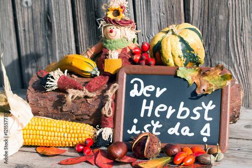 Der Herbst ist da mit Vogelscheuche,Mais,Kürbis,Eichel,Hagebutte ...