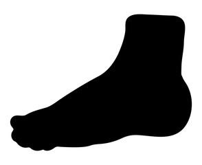 bare foot silhouette vector symbol icon design.