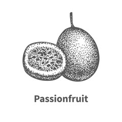 Doodle sketch hand-drawn passionfruit