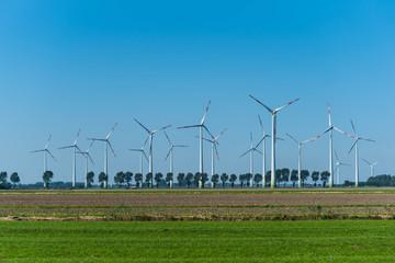 Windpark an der Küste