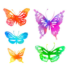 Amazing colorful background with butterflies,  watercolors (vect