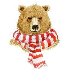 Brown bear wearing a scarf