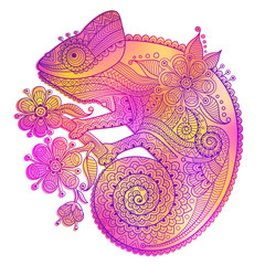 Vector illustration of rainbow chameleon and decorative patterns