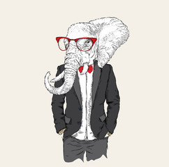 Illustration of elephant hipster dressed up in jacket, pants and sweater. Vector illustration